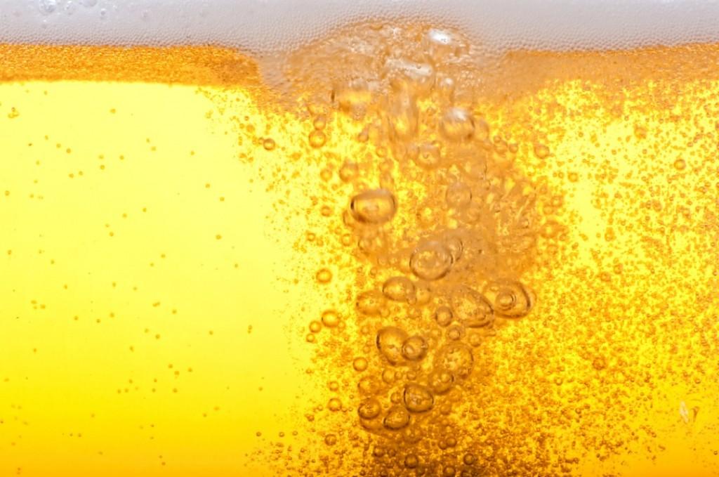 ビール太る嘘原因