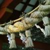 しめ縄の意味や由来とは?正月飾りはいつからいつまでの期間に飾る?