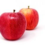 アップル社のロゴの意味や由来、諸説のほとんどは嘘情報。