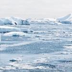 南極には砂漠があり、サハラ砂漠と比べても圧倒的に広い。