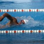 水泳の自由形をクロールで泳ぐ理由は、単純に速いからではない。