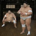 相撲が国技ではないってホント?日本の国技の定義とは?
