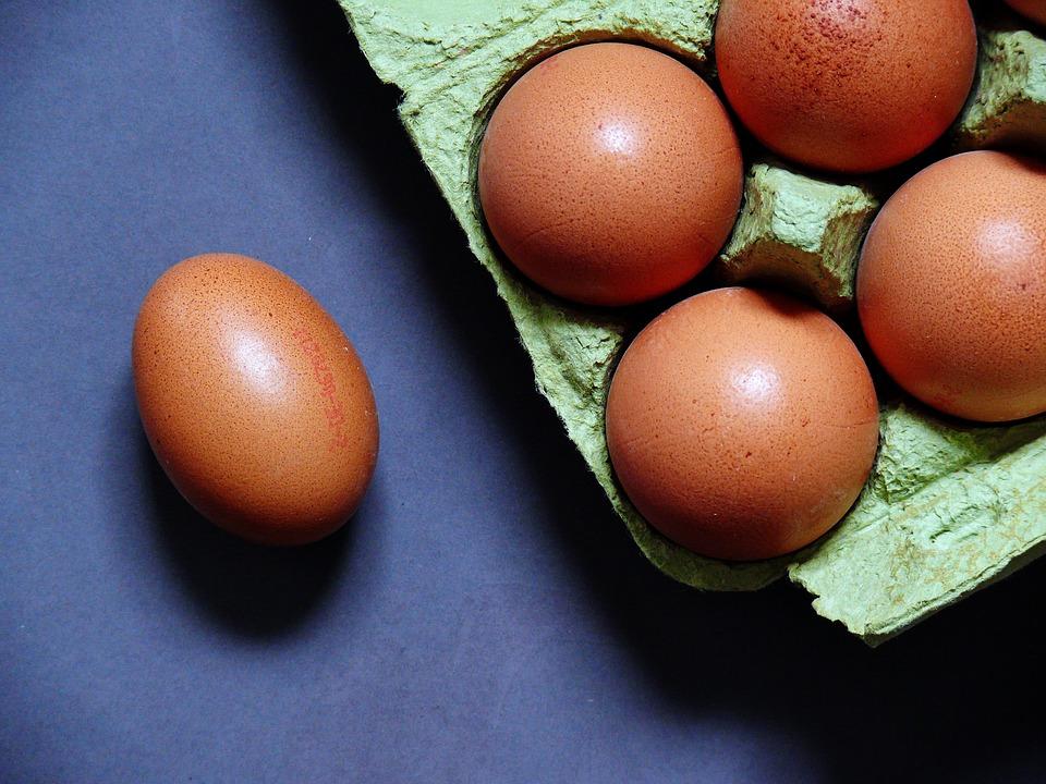 卵玉子違い使い分け