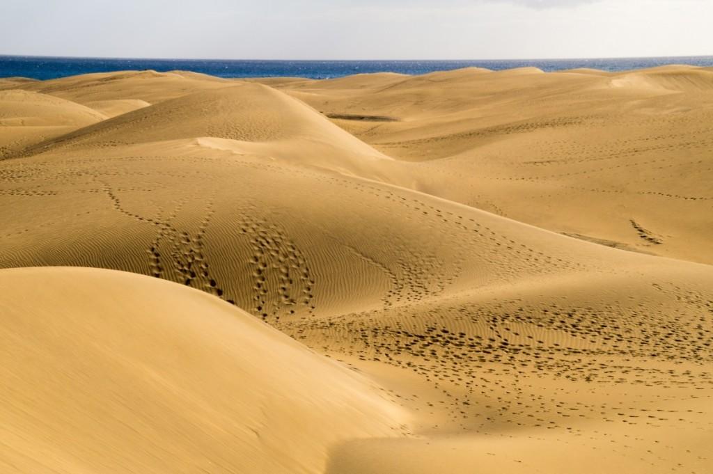 砂丘砂漠違い